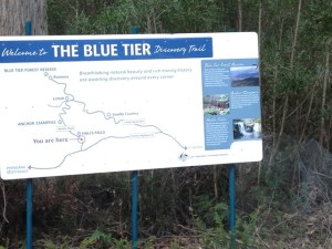 The Blue Tier, Tasmania