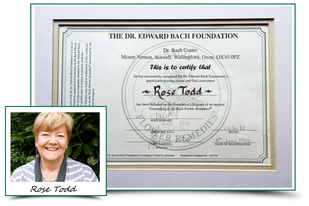 Rose Todd Bach Flowers Practitioner Certificate Rose Todd