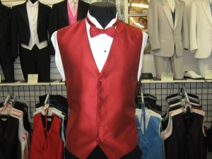 Full back vest and bow