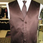 Brown Vest and long tie