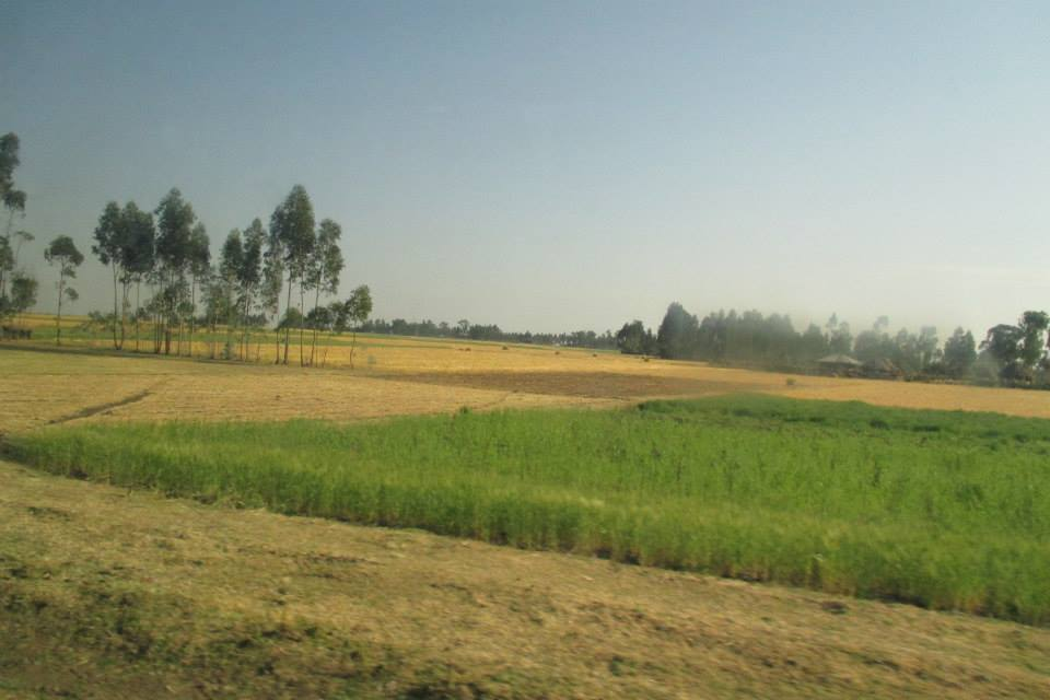 De camino a las cataratas del Nilo Azul, Etiopía