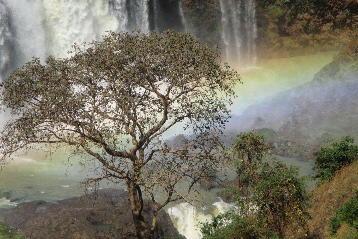 Cataratas del Nilo Azul.