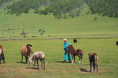 Mongolia, la gran desconocida.