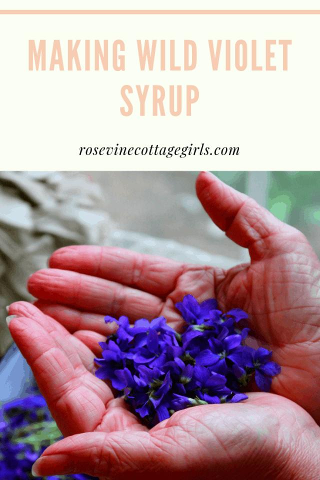 Homemade Wild Violet Syrup, making violet syrup, making violet syrup, violet syrup making by Rosevine Cottage Girls