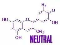 anthocyanin-neutral