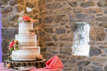 rosies_creative_cakes-3
