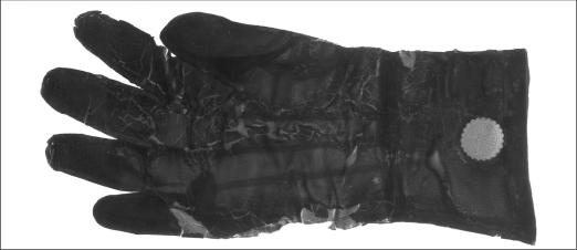 an original surgical rubber glove