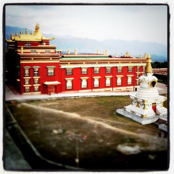 Dzongsar Shedra