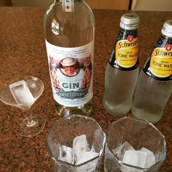 Dobson's New England Dry for World Gin Day