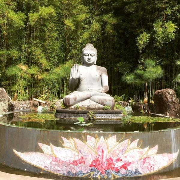 Buddha blessings for JK today