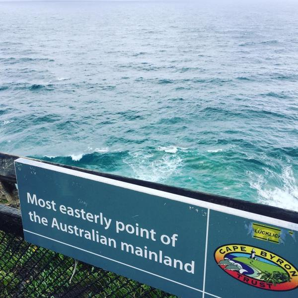 Dolphins & whales at the eastest of oz...