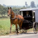 Drive-By Amish Buggy Shooting
