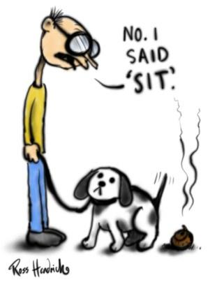 sit shit dog cartoon joke