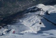 Bird, Midi North Face