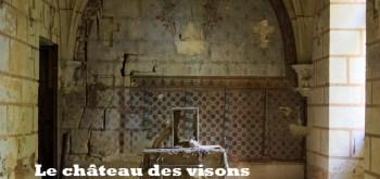 Le château des visons