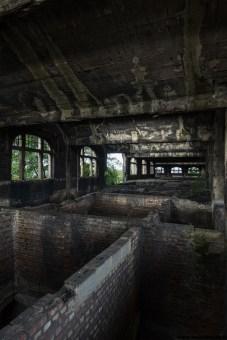 Le charbonnage du zoo