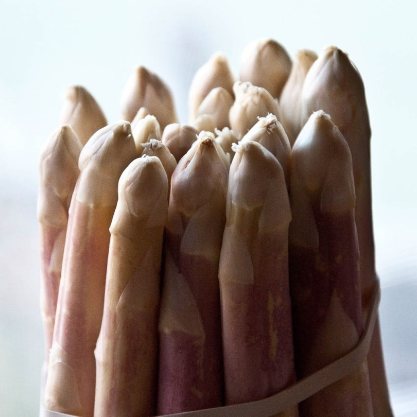 White asparagus - Vicenza, Italy - rossiwrites.com