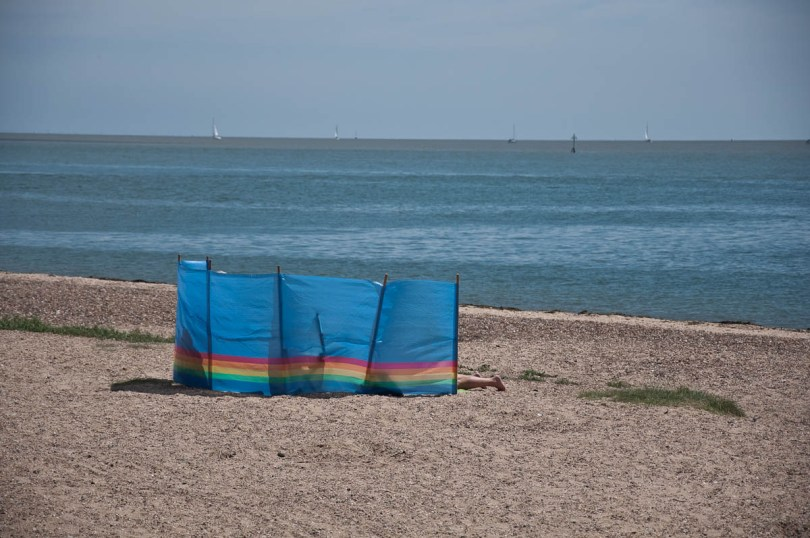 A windbreak, Mersea Island, Essex, England - www.rossiwrites.com