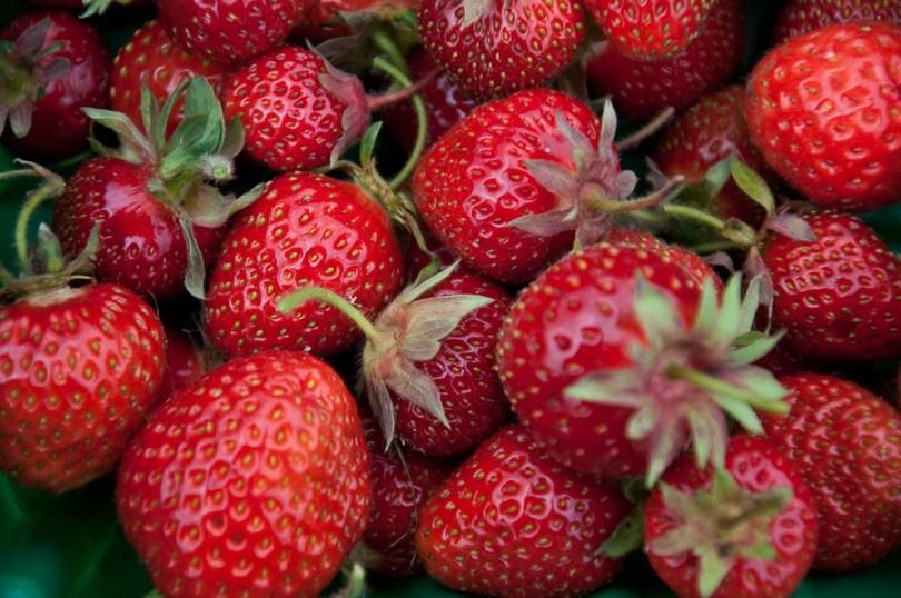 Freshly picked strawberries, England - www.rossiwrites.com