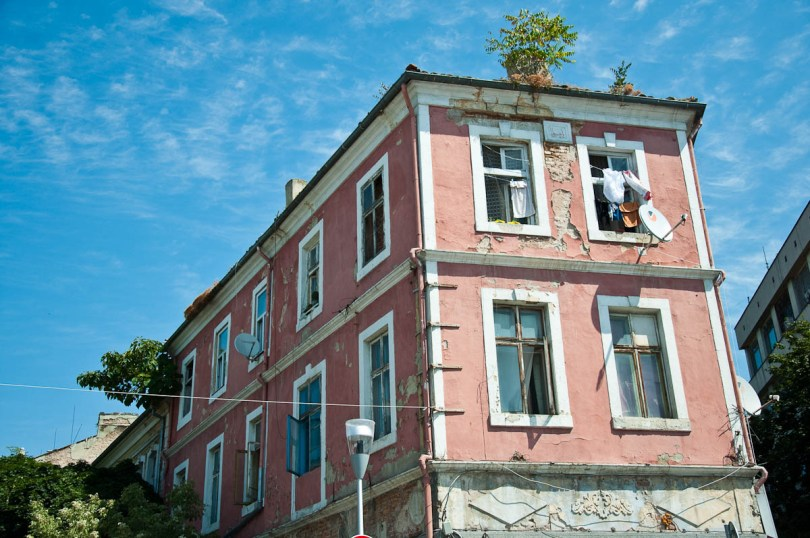 a-dilapidated-pink-house-with-trees-growing-on-its-roof-varna-bulgaria-www.rossiwrites.com