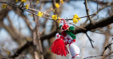 A Bulgarian martenitsa hanging from a bush in bloom - Colli Berici, Vicenza, Italy - www.rossiwrites.com