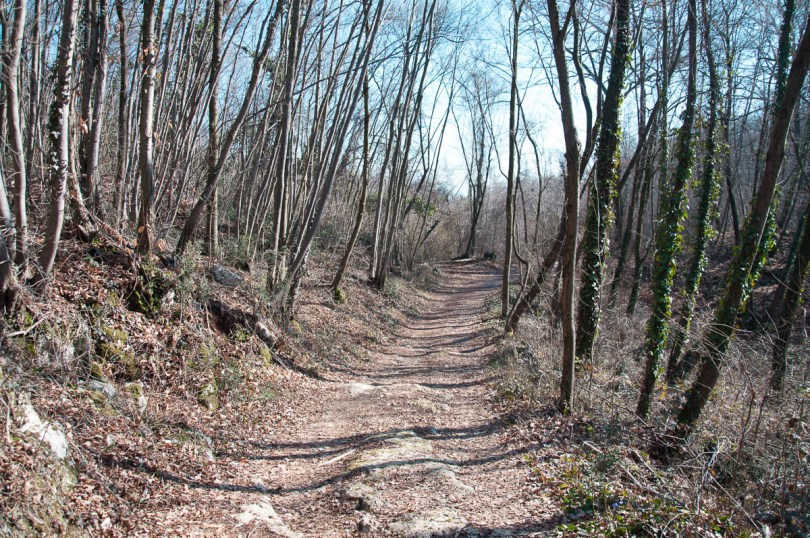 The hiking trail - Colli Berici, Vicenza, Italy - www.rossiwrites.com