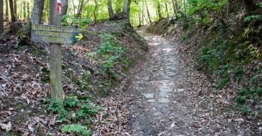 The hiking path leading to the former Olivetani monastery on Monte Venda - Euganean Hills, Veneto, Italy - www.rossiwrites.com