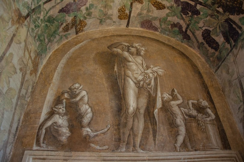 Frescoes with grapes - Cornaro Loggia and Odeon - Padua, Veneto, Italy - www.rossiwrites.com