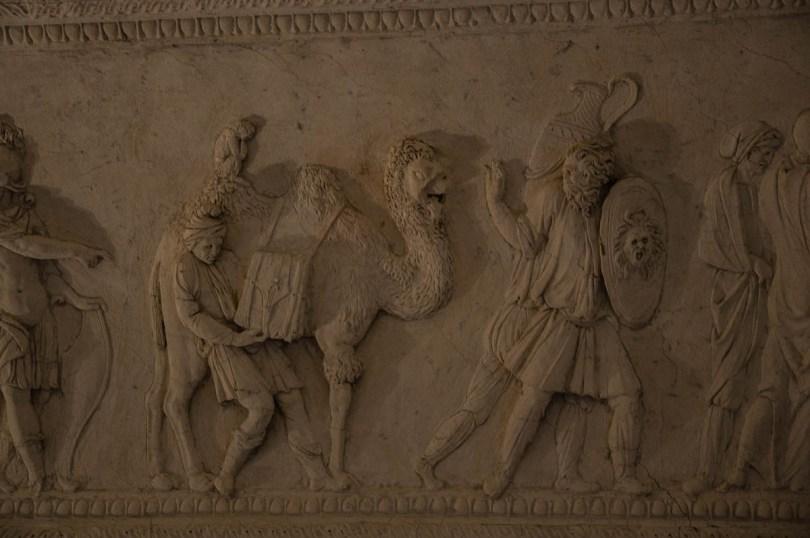 Stuccoed camel - Loggia e Odeo Cornaro - Padua, Veneto, Italy - www.rossiwrites.com