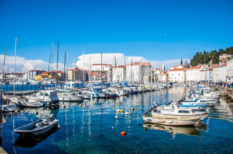 The marina - Piran, Slovenia - www.rossiwrites.com
