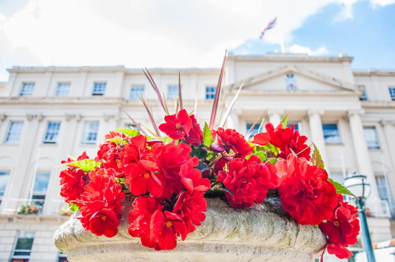 Flowers in front of the Municipal Offices - Cheltenham, England - www.rossiwrites.com