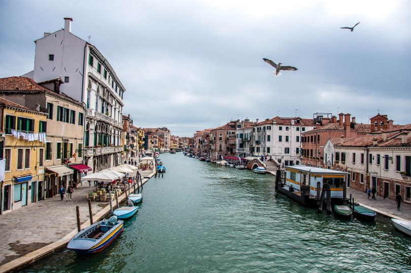 Venetian canal with seagulls - Venice, Italy - www.rossiwrites.com
