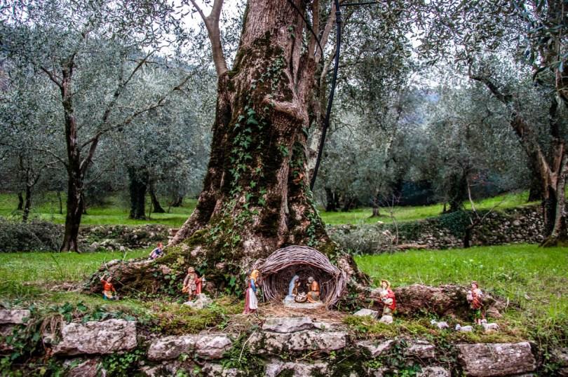 Nativity scene in an olive grove - Campo di Brenzone, Lake Garda, Veneto, Italy - rossiwrites.com