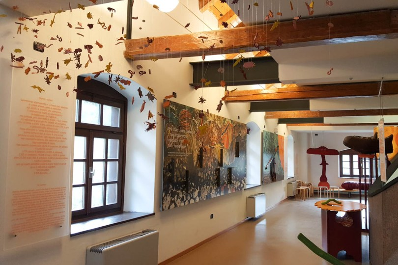 Inside the Visitors' Centre - Paneveggio - The Violins' Forest - Dolomites, Trentino, Italy - rossiwrites.com
