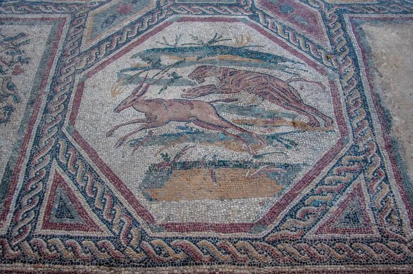 Roman mosaics in the Roman Villa - Desenzano del Garda, Lombardy, Italy - rossiwrites.com