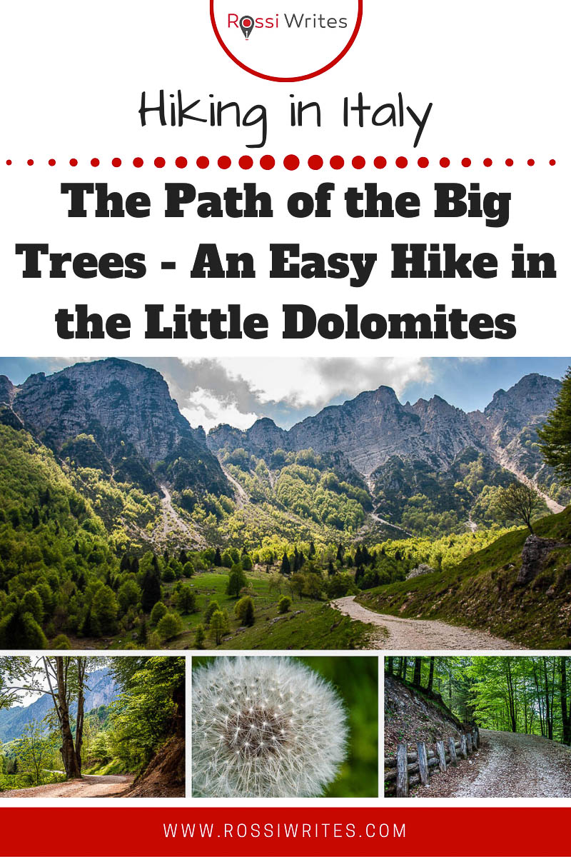 Pin Me - Walking the Path of the Big Trees - Sentiero dei Grandi Alberi - An Easy Hike in the Little Dolomites in Northern Italy - rossiwrites.com