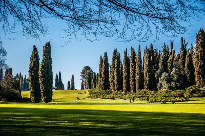 The Great Lawn - Parco Giardino Sigurta' - Valeggio sul Mincio, Veneto, Italy - rossiwrites.com