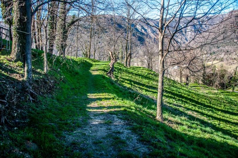 The hilltop path - Dante's Hill - Col Bastia - Romano d'Ezzelino, Veneto, Italy - rossiwrites.com