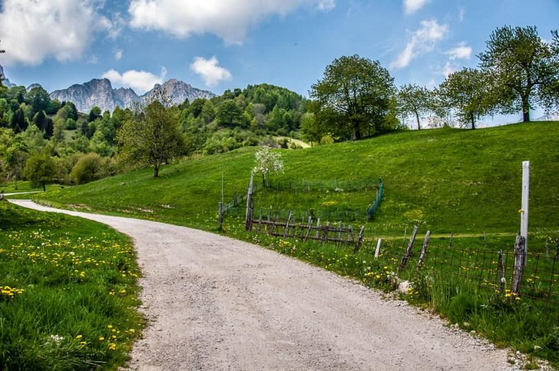 The start of the hike - Casare Asnicar - Sentiero dei Grandi Alberi - Province of Vicenza, Veneto, Italy - rossiwrites.com