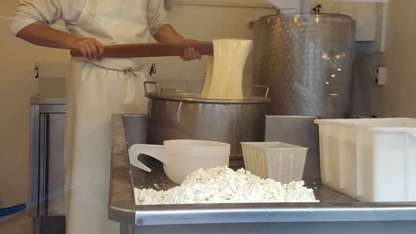 Making cheese - Padua, Veneto, Italy - rossiwrites.com