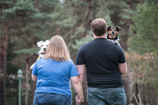 dogs in engagement photos