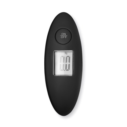 Luggage scale