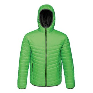 Acadia II Down-Touch Padded Jacket