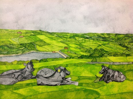 Cows at Digley. Inks on Bockingford CP NOT. 38 x 28 cm SOLD