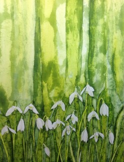 Snowdrops. 28 x 38 cm Inks on Bockingford HP paper. POA