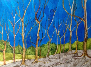 Woods at Digley. 38 x 28 cm Inks on Moulin du Roy Torchon paper. POA