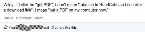 excellent facebook comment