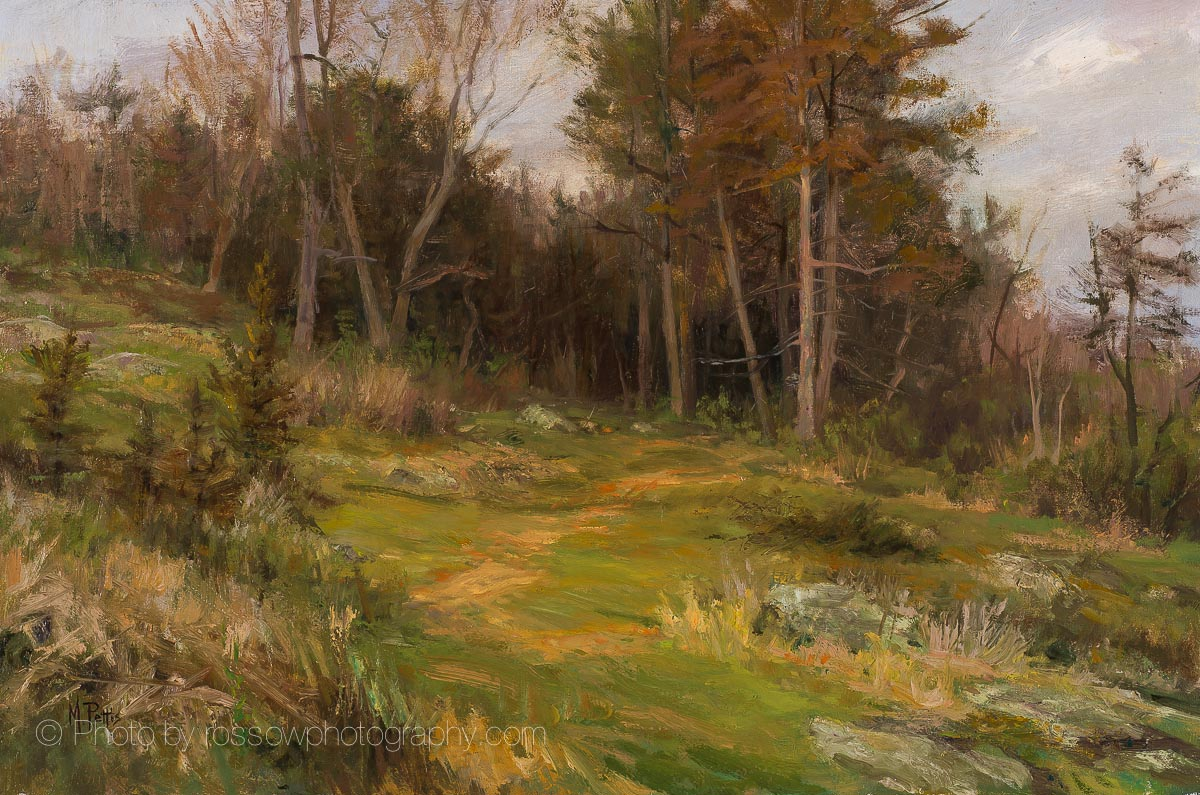 Artwork photography of Cedars in Springtime Mary Pettis
