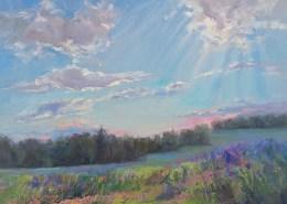 Let the Light Shine-Sue Wipf