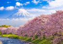 Japonia | The Best Hotel Booking